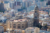 Cathedral of Malaga — Stock Photo