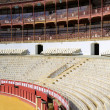 Stock Photo: Bull fighting arena