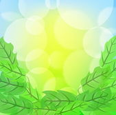 Green spring background with leafage and blurry light — Stock Vector