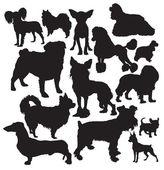 Decoratieve honden vector — Stockvector