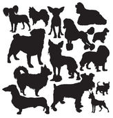 Vettore di cani di lusso — Vettoriale Stock