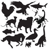 Animals silhouette vector — Stock Vector