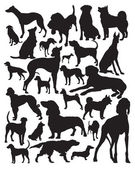 Hunting dogs vector — Stock Vector