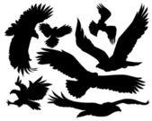 Eagles vector silhouette — Stock Vector