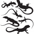Vector lizards — Stock Vector