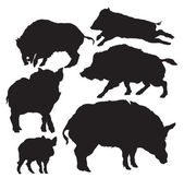 Wild boar vector — Stock Vector