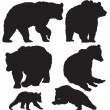 Bears vector — Stock Vector