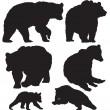 Bears vector — Stock Vector #22646289