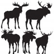 Moose vector — Stock Vector