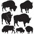 Buffalo vector silhouettes — Stock Vector