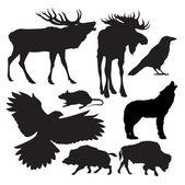 Animals vector — Stock Vector