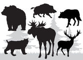 Animals of the taiga vector — Stock Vector