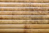Bamboo background — Stock Photo