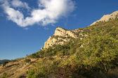Vicinity of Cape Aiya. Crimea. — Stock Photo