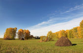 Autumn landscape with haycock on a field — Stock Photo