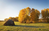 Autumn landscape with haycock on a meadow — Stock Photo