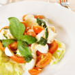 Classical Italian salad with vegetables - Stock Photo