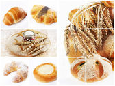 Collage of assortment of baked bread — Stock Photo