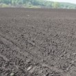 Plowed field — Stock Video #26594755