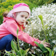 Pretty Little Girl in Garden with White Flowers — Stock Photo #27447255