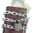 Wallet full of money is chained with a padlock — Stock Photo