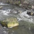 Turbulent mountain river   — Stock Video