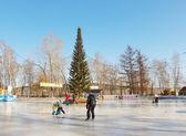 Skating rink in the city park in Kemerovo city — Stock fotografie