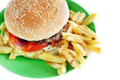 Hamburger with French fries in the plate — Stock Photo