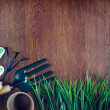 Garden tools over wooden background — Stock Photo #44861437