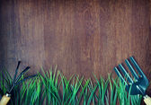 Gardening tools and grass over wooden background — 图库照片