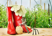Garden tools and rubber boots into greenhouse — Stock Photo