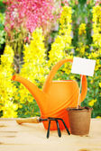 Bright horticultural still life in the flower garden — Stock Photo