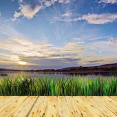 Beautiful summer landscape at the lake in evening — Stock Photo