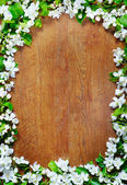 Wooden background with decorative frame made of apple flowers — Stock Photo