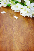 White apple flower on a wooden board — Stock Photo