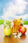 Still life with a glass of fresh apple juice and apples — Stock Photo