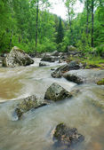 Beautiful landscape with stormy mountain creek — Stock Photo