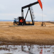 Pumpjack in northern Alberta, Canada — Stock Photo #6585383
