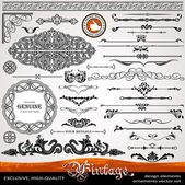 Vintage ornaments and dividers, calligraphic design elements — Stockfoto