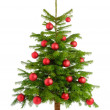 Lush Christmas tree with red baubles — Stok fotoğraf