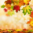 Autumn bokeh background bordered with leaves — Stock Photo