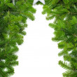 Creative Christmas tree border — Stock Photo