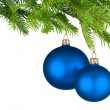 Blue Christmas baubles hanging from fresh green twigs — Stock Photo