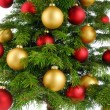图库照片: Christmas tree closeup