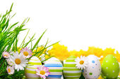 Easter eggs arrangement — Stock Photo