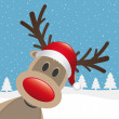 Rudolph reindeer red nose hat — Stock Photo