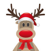 Reindeer red nose santa hat scarf — Stock Photo