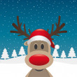 Reindeer red nose santclaus hat — Stock Photo #13435751