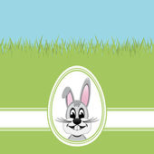 Happy easter bunny white egg green grass — Stock Vector