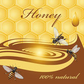 Honey background and bees — Stock Vector